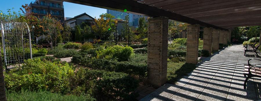 交流の庭(公開空地)